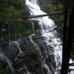 Falls at Rickett's Glen State Park